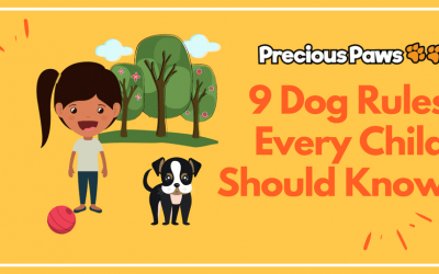 "9 ""Dog-Friendly"" Rules for Kids"