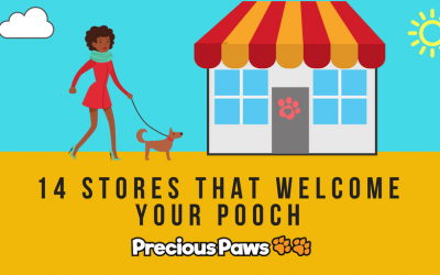14 Retail Stores That Welcome Your Pooch