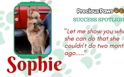 Success Spotlight: Sophie