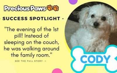 Success Spotlight: Cody