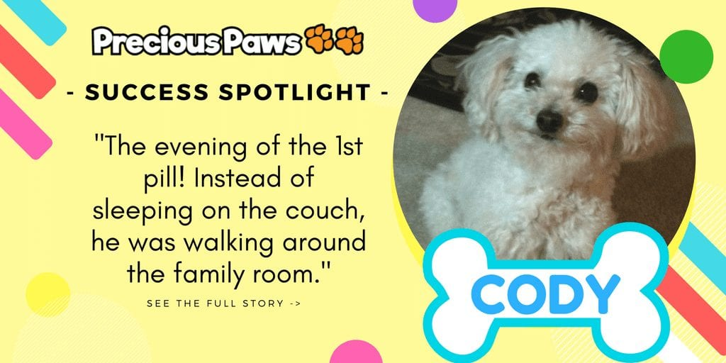 Success Spotlight: Cody
